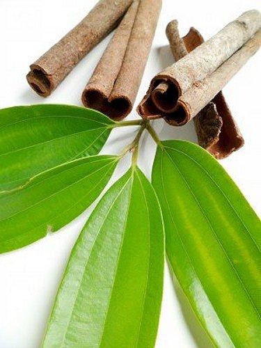 Cinnamon Leaf Organic