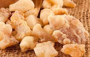 Frankincense Neglecta ORGANIC