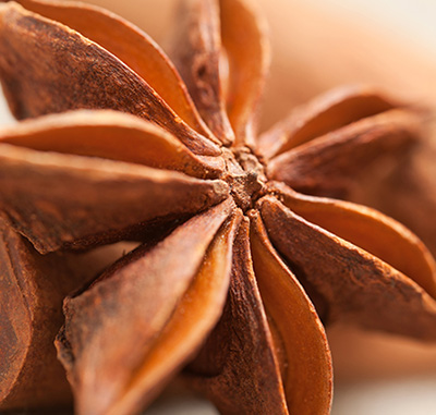 Star Anise CO2 ORGANIC (SELECT)