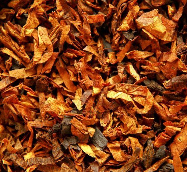 Assoluta di Tabacco Virginia