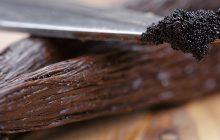 Vanilla Madagascan Premium Bourbon 20% Tincture