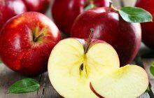 Apple Juice CO2 (TOTAL)
