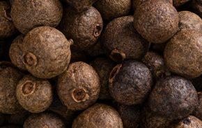 Cinnamon Berries Extra Organic