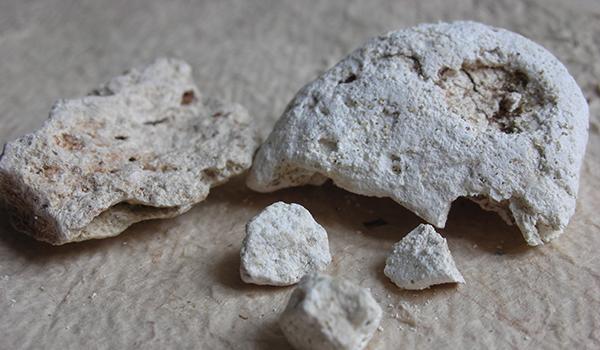 White Ambergris 3% Ethanol Tincture